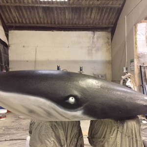 Scenic prop whale in the making